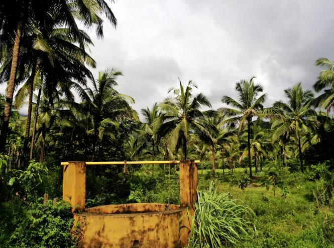 Фото №7 - Курорт SwaSwara: Трудно быть йогом