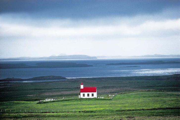 Фото №4 - Чистая энергия: как исландцы научились выращивать землянику круглый год