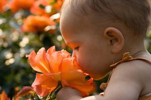 Фото №1 - Первое лето малыша