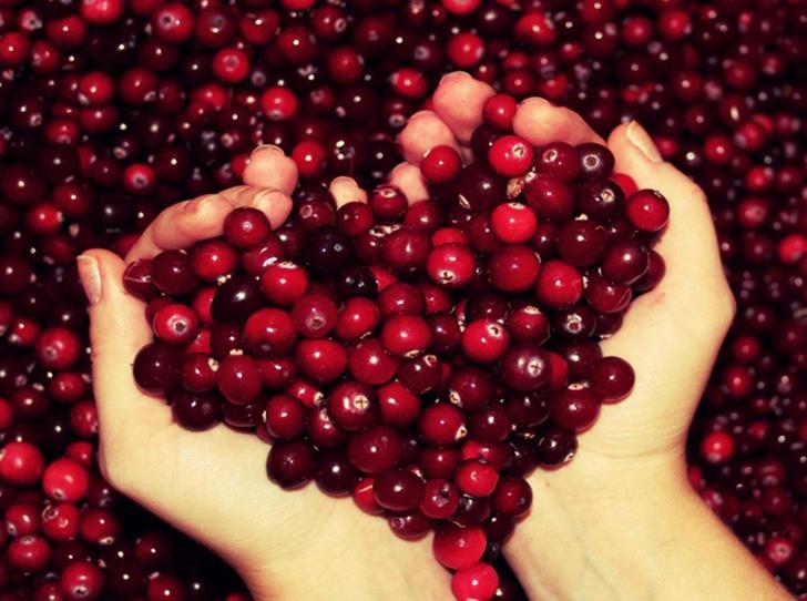 Фото №5 - В своем отечестве: самые полезные осенние ягоды