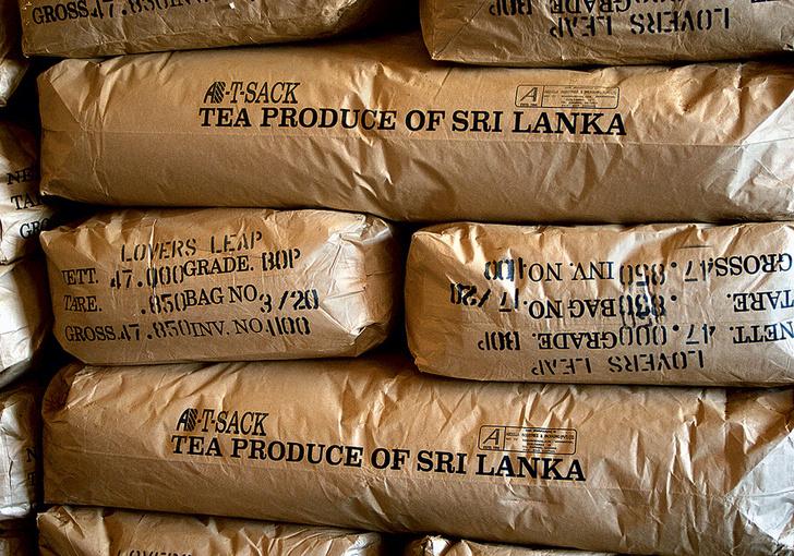 Фото №9 - Великий чайный путь