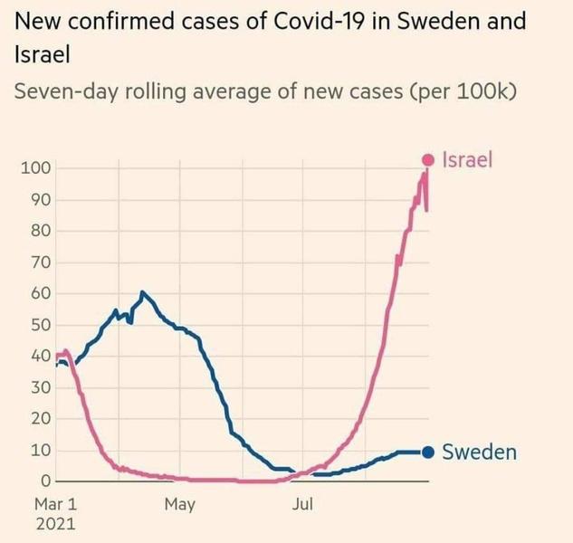 Фото №1 - Швеция побеждает пандемию успешней Израиля, несмотря на отсутствие строгих антиковидных мер