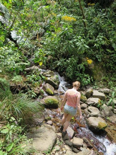 Фото №6 - Пропавшие в джунглях:  леденящая история гибели двух голландских девушек в Панаме