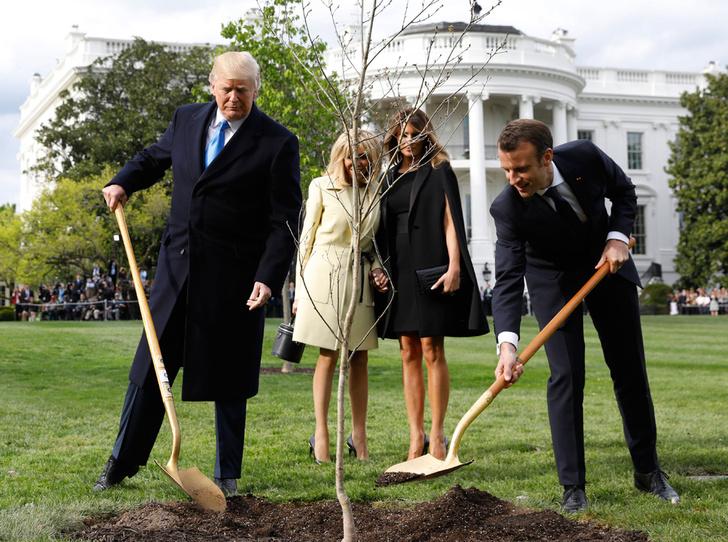 Фото №7 - Как Трамп Макрона принимал: самые яркие детали госвизита французской Первой пары в США