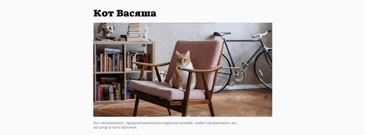 Фото №3 - Сайт дня: Интернет-журнал о домашних животных и их историях