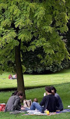 Фото №8 - Французский поцелуй
