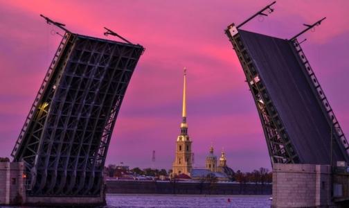 Фото №1 - Дворцовый мост в Петербурге сегодня станет фиолетовым