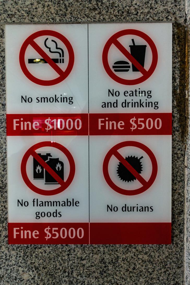Фото №5 - «Мы вас предупредили»: 8 вещей, которые не стоит делать в разных странах мира