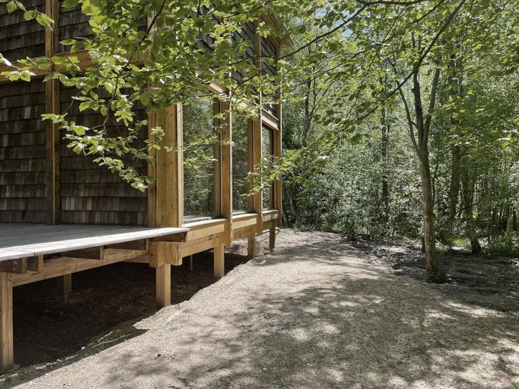 Фото №3 - Деревянная школа в датском лесу