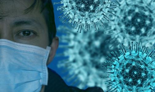 Фото №1 - Иммунолог 40-й больницы: Для оценки силы иммунитета к коронавирусу после прививки есть пока только один инструмент
