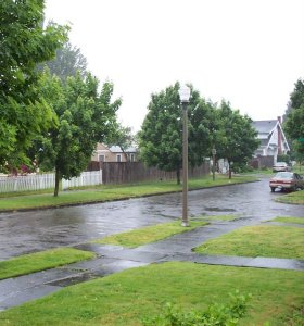Фото №1 - Погода на выходных будет теплой и влажной