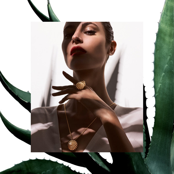 Фото №6 - Цветы пустыни: новая коллекция Cactus de Cartier