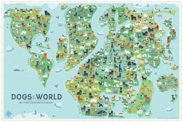 Фото №2 - Карта пород собак по странам их происхождения