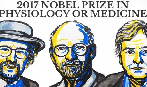 Фото №1 - Названы победители Нобелевской премии по медицине-2017