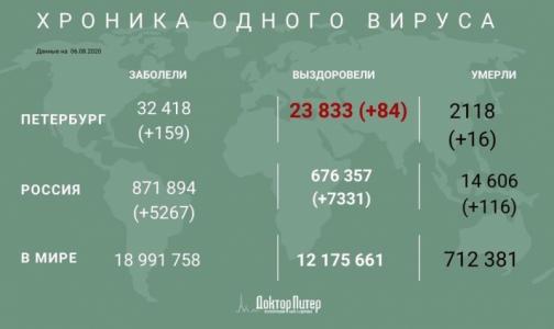 Фото №1 - За сутки еще у 159 петербуржцев выявили коронавирусную инфекцию