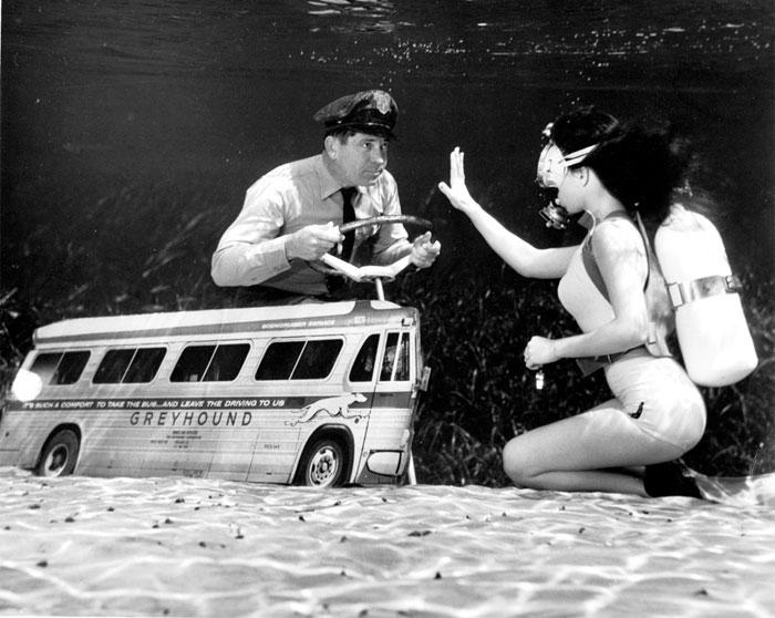 Фото №5 - В тихом омуте: история фантастических подводных фото Брюса Мозерта