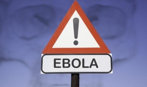 Фото №1 - Красный крест: Эпидемию лихорадки Эбола можно победить за полгода