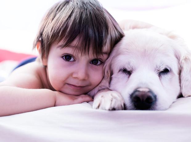 Фото №5 - Дети и домашние животные: чем опасна их дружба?