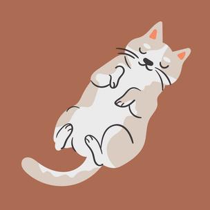 Фото №2 - Тест: Выбери котика, а мы скажем, что парням нравится в тебе