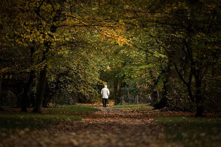 Фото №1 - Одиночество негативно влияет на мозг