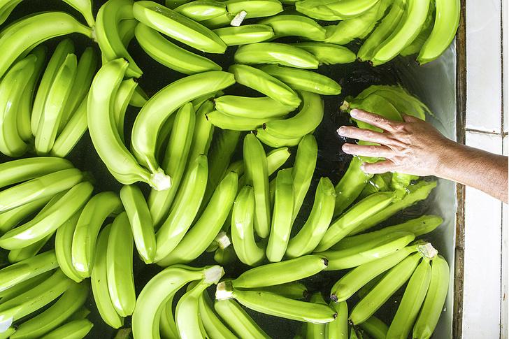 Фото №7 - Рабочий момент: банановый рай