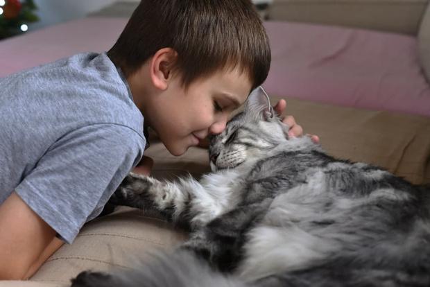 Фото №3 - Что делать, если у ребенка аллергия на кошку