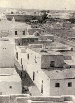 Фото №6 - Земля и солнце Туниса