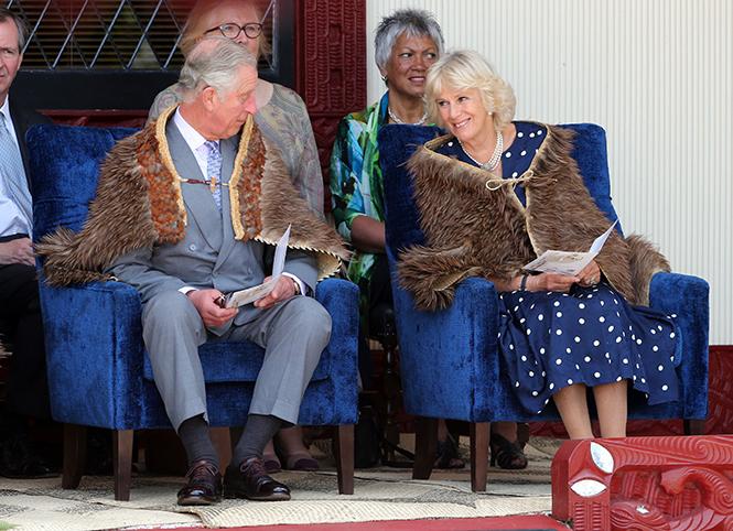 Фото №15 - Принц Чарльз и его Камилла: двое против всех