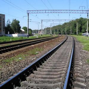 Фото №1 - Путешественников из Петербурга в Таллинн не хватает на поезд