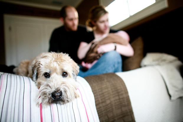 Фото №1 - Мать требует сменить кличку собаки, чтобы назвать так дочь