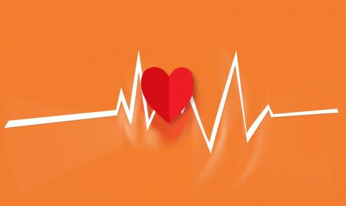 Фото №1 - По пульсу можно вычислить, сколько будет жить человек, заявила кардиолог