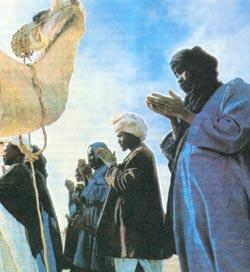 Фото №3 - По заветам Корана и зову сердца