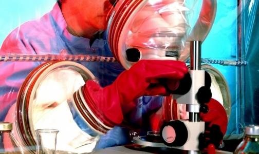Фото №1 - Роснано создает предприятие по разработке лекарств от рака