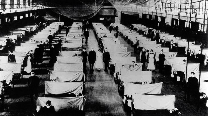 Фото №2 - Самые совершенные вирусы: отрывок из книги «Испанка. История самой смертоносной пандемии»