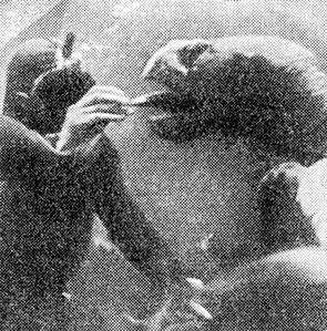 Фото №1 - Акулы объявляют голодовку
