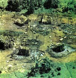 Фото №2 - Пепел амазонского леса