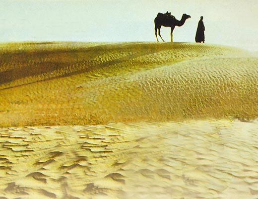 Фото №1 - Как в Тунисе нечаянно ходят в гости