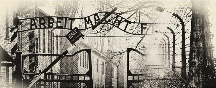 Фото №7 - Гладиатор из Освенцима: история участника боксерских боев в концлагере