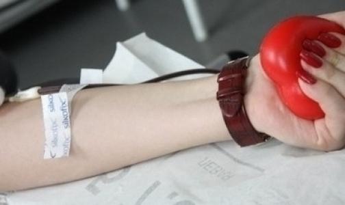 Фото №1 - Кто такой donor sapiens и как стать донором
