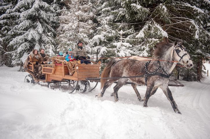 Фото №1 - Рождественские традиции