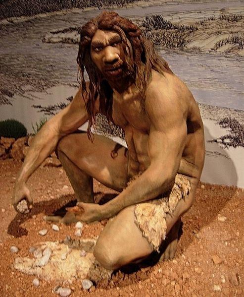 Фото №1 - Анализ зубного камня рассказал о рационе людей, живших 400 000 лет назад