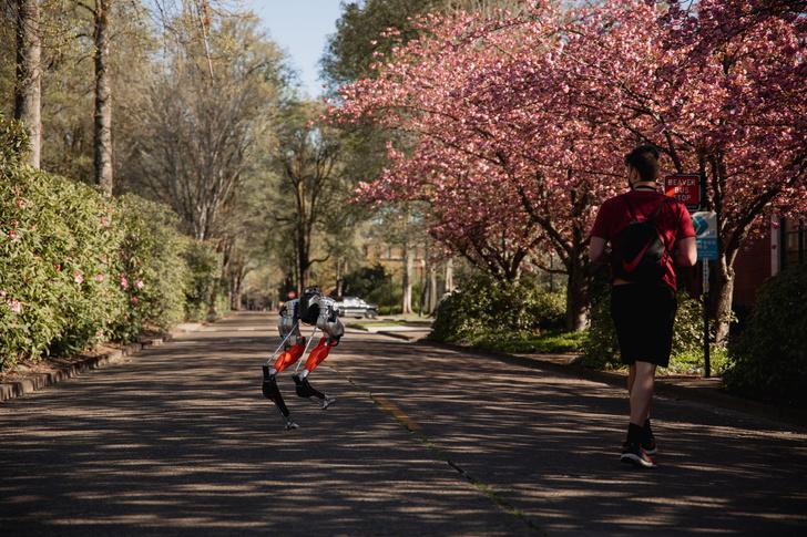Фото №1 - Робот впервые пробежал пять километров