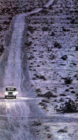Фото №5 - По дорогам Америки: пустыня