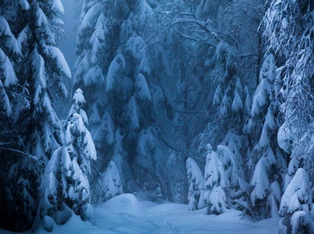 Фото №10 - Let it snow: самые снежные страны