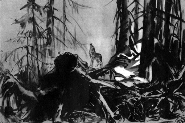 Фото №1 - Мои соседи — волки