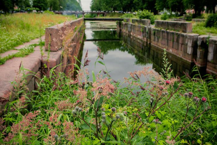 Фото №2 - Грандиозная затея Петра: 14 загадок Староладожского канала