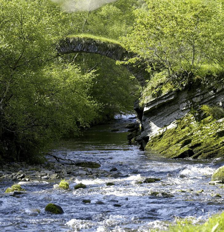 Фото №1 - Пора в Шотландию: на родину виски и место для выдоха