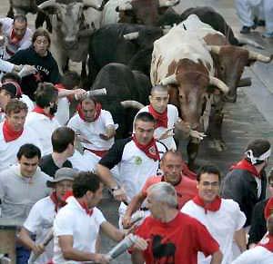 Фото №1 - От быков в Памплоне пострадали 13 человек