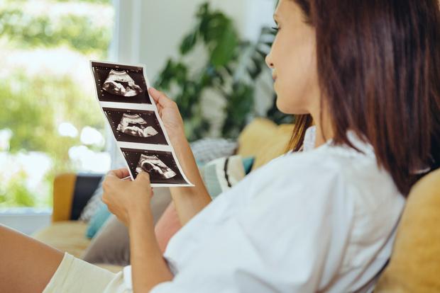 Развитие эмбриона по неделям беременности от зачатия