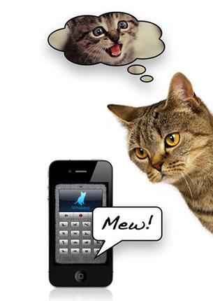 Переводчик на кошачий